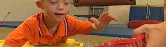 Case Study: Easter Seals of Michigan